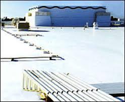 Flat White TPO Roof