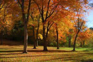 Hudson, MA Park