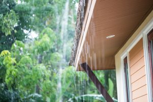 Rainy Roof
