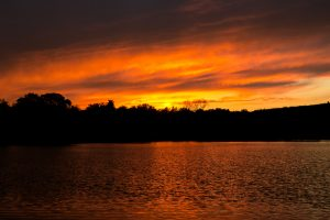 Belmont, MA Pond